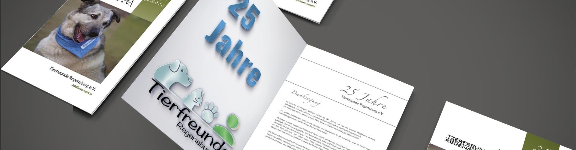 Jubiläumsmagazin Header by Christian Santos